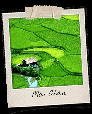 polaroid rizières Mai Chau