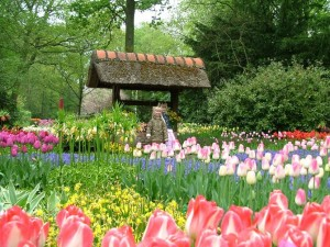 dalat-flower-garden
