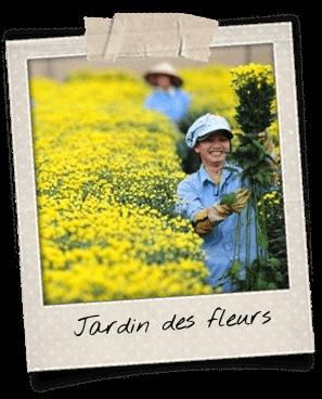 jardin-des-fleurs-dalat