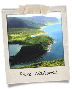 parc-national-con-dao