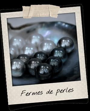 perles-fermes-phu-quoc
