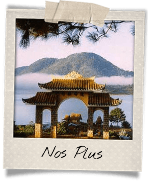 nos-plus-vietnam-centre