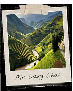 Les plus belles rizières du Vietnam sont à Mu Cang Chai