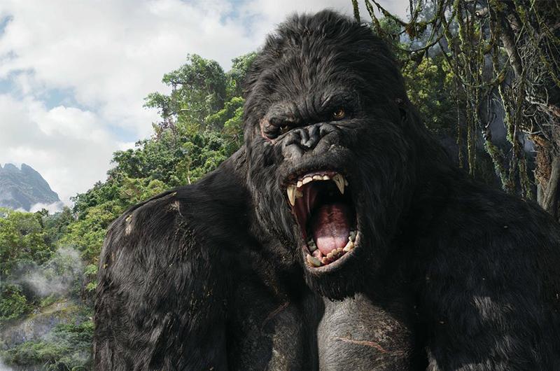 Nouveau film King Kong tournage au Vietnam