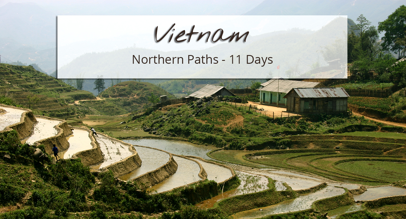 Hike in the rice fields of northern Vietnam