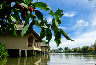 Mekong Riverside bungalows along river